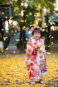 七五三参りの後でイチョウの落ち葉がふりそそぎ喜ぶ女の子